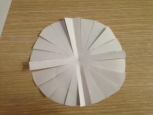Carta forno tagliata pronta per la teglia sferica